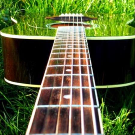 música 🎶 naturaleza 🦎 y más...