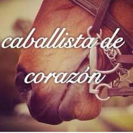 amor por los caballos