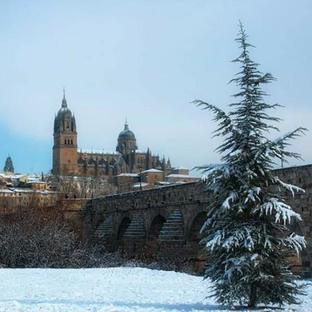 Cine y picoteo Salamanca