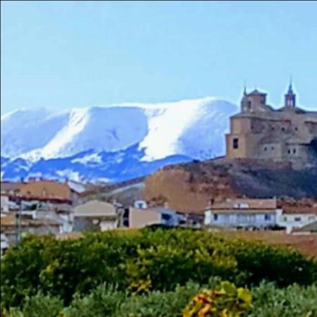 Singles Ribera de Navarra y al
