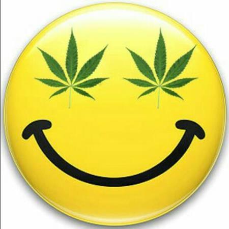 Amantes de la marihuana ☘🍀🌿